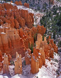 Bryce Canyon 2 (V) Stock Images