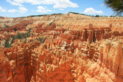 Bryce Canyon. Unique landscape pictures of red sandstone formations Stock Images