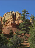 Bryce Canyon. Rock formation in famous Bryce Canyon Royalty Free Stock Image