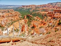 Bryce canyon. Nice rock formations of bryce canyon Stock Image