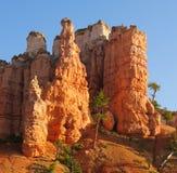 Bryce Canyon fotografia stock