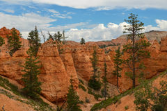Bryce Canyon Stock Foto's