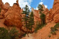 Bryce Canyon Photographie stock libre de droits