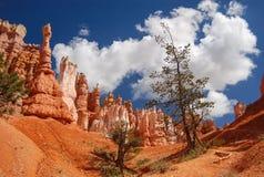 Bryce Canyon Image libre de droits