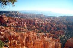Bryce Canyon Royaltyfria Bilder