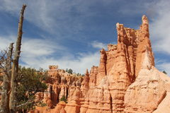 Bryce Canyon Foto de archivo libre de regalías