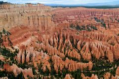 Bryce Canyon Royalty-vrije Stock Foto
