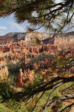 Bryce Canyon Fotos de archivo