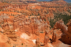 Bryce Canyon Fotografia de Stock Royalty Free