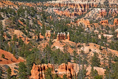 Bryce Canyon Fotos de Stock Royalty Free