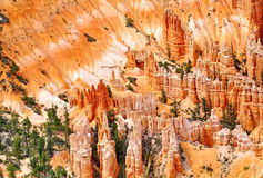 Bryce Canyon Photos stock