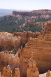 Bryce Canyon. View coming up Navajo trail at Bryce Canyon Royalty Free Stock Image