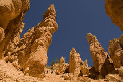 Bryce Canyon. Looking up the Navajo Trail at Bryce Canyon Stock Photo