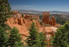 Bryce Canyon Immagini Stock