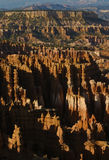 Bryce canyon. Rock formation in bryce canyon  utah Royalty Free Stock Photos
