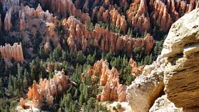 Bryce Canyon. Hoodoo formations glowing in afternoon sunlight, captured from Inspiration Point in Bryce Canyon National Park, Utah Stock Images