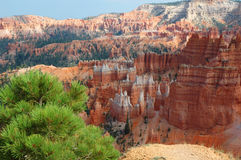 Bryce Canyon. View from the rim of the Bryce Canyyon to the Hoodoos Royalty Free Stock Photography