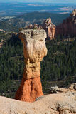 Bryce Canyon Stockbild