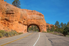 Bryce Canyon Stock Photos