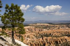 Bryce Canyon against a blue sky. Bryce Canyoun National Park with a summer blue sky in the background stock photo