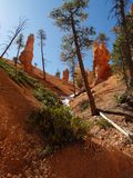 Bryce Canyon along Peekaboo trail Royalty Free Stock Photography