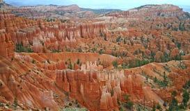 Bryce Canyon Ampitheatre 14 Royaltyfri Foto