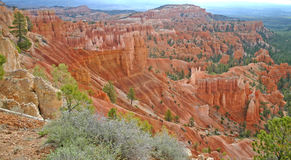 Bryce Canyon Ampitheatre 6. Rock columns called hoodoos formed from red sandstone, in Bryce Canyon, Utah Royalty Free Stock Photos
