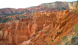 Bryce Canyon Ampitheatre 4. Rock columns called hoodoos formed from red sandstone, in Bryce Canyon, Utah Royalty Free Stock Images