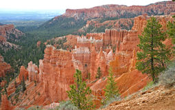 Bryce Canyon Ampitheatre 15. Rock columns called hoodoos formed from red sandstone, in Bryce Canyon, Utah Stock Photo