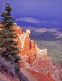 Bryce Canyon with an approaching storm. View of Bryce canyon with approaching storm in the background and tree in the foreground Royalty Free Stock Images