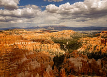 Bryce Canyon Beauty i ålder Arkivbilder