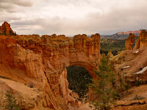 Bryce Canyon The Bridge Royaltyfria Bilder