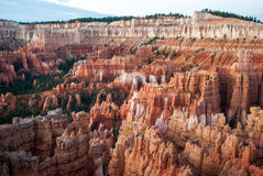 Bryce Canyon and Cathedral in the Morning Royalty Free Stock Photos