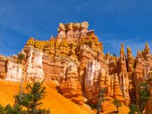 Bryce Canyon Royalty Free Stock Photography