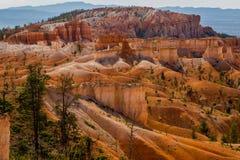Bryce Canyon dyn Royaltyfri Foto