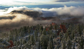 Bryce Canyon Fog. Morning fog covers Bryce Canyon National Park, Utah, USA Stock Photos