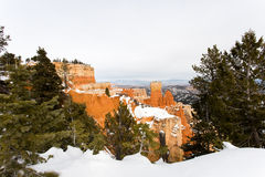 Bryce Canyon and Fresh Snowfall. Fresh snowfall on pine trees and unique rock formations known as hoodoos in Bryce Canyon National Park Utah Stock Photo