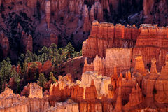 Bryce Canyon Glowing in de Vroege Ochtendzonneschijn stock foto