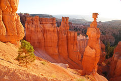 Bryce Canyon Hiking Trails. You could spend days or weeks visiting the amazing rock formations here in Bryce Canyon, but you'd never be able to see them all royalty free stock image