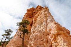 Bryce Canyon Hoodoo Formation sikt från dalgolv Royaltyfria Foton