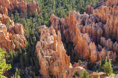 Bryce Canyon Hoodoo View Royalty-vrije Stock Foto's