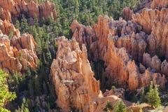 Bryce Canyon Hoodoo View Royalty Free Stock Photos