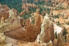 Bryce Canyon Hoodoos. This is a close-up picture of hoodoos from Bryce Canyon National Park Stock Photography