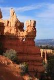 Bryce Canyon Hoodoos. Hoodoos in Bryce Canyon National Park, Utah, USA Royalty Free Stock Photography