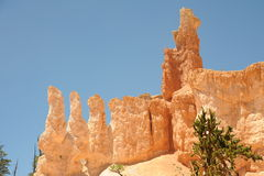 Bryce Canyon Hoodoos Stock Photos