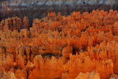 Bryce Canyon hoodoos Stock Images
