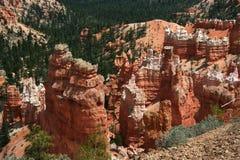 Bryce Canyon Hoodoos. Hoodoos in Bryce Canyon National Park, Utah, USA Stock Image