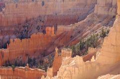 Bryce canyon hoodoos. Bryce Canyon national park in Utah Royalty Free Stock Photography