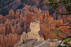 Bryce Canyon Hoodoos from above Stock Image