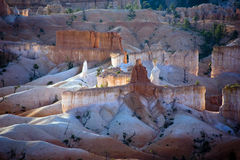 Bryce Canyon hoodoos in the first Royalty Free Stock Images